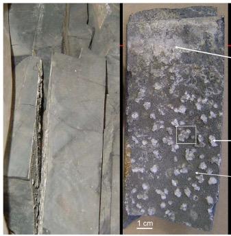 Unconventionals Bridged Naturals - OilField Geomechanics