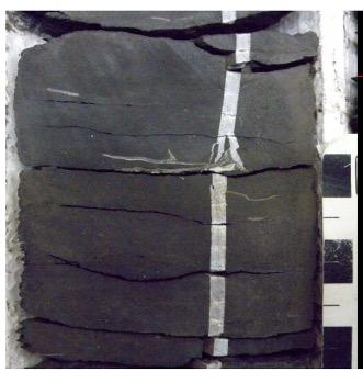 Unconventionals Cemented Naturals - OilField Geomechanics